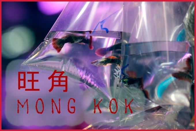 Mong-Kok-titre-galerie
