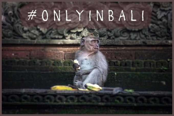 titre galerie Bali